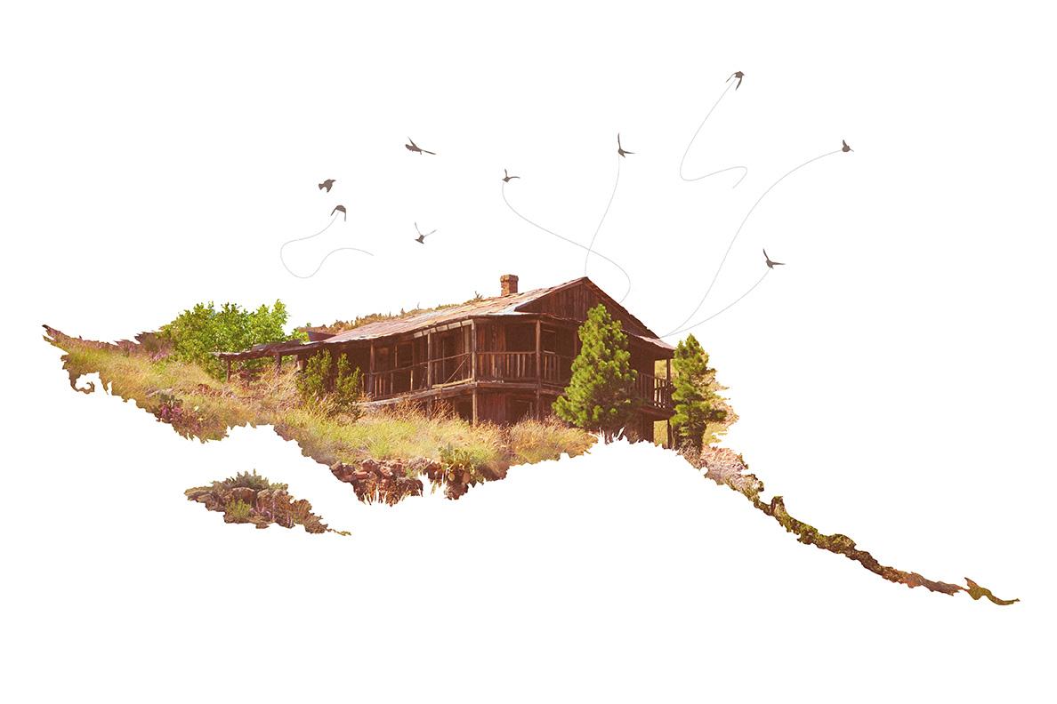 When Birds Won't Attack - 72