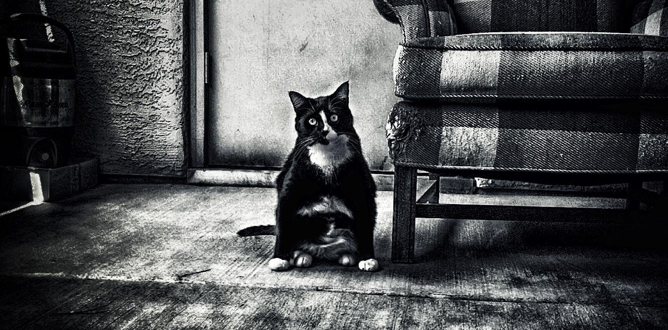 wide stance2